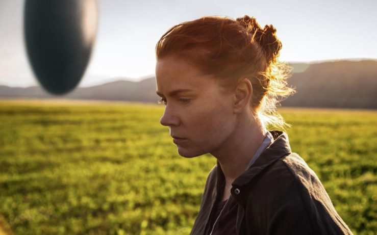 Amy Adams is what truly made this film amazing for me.